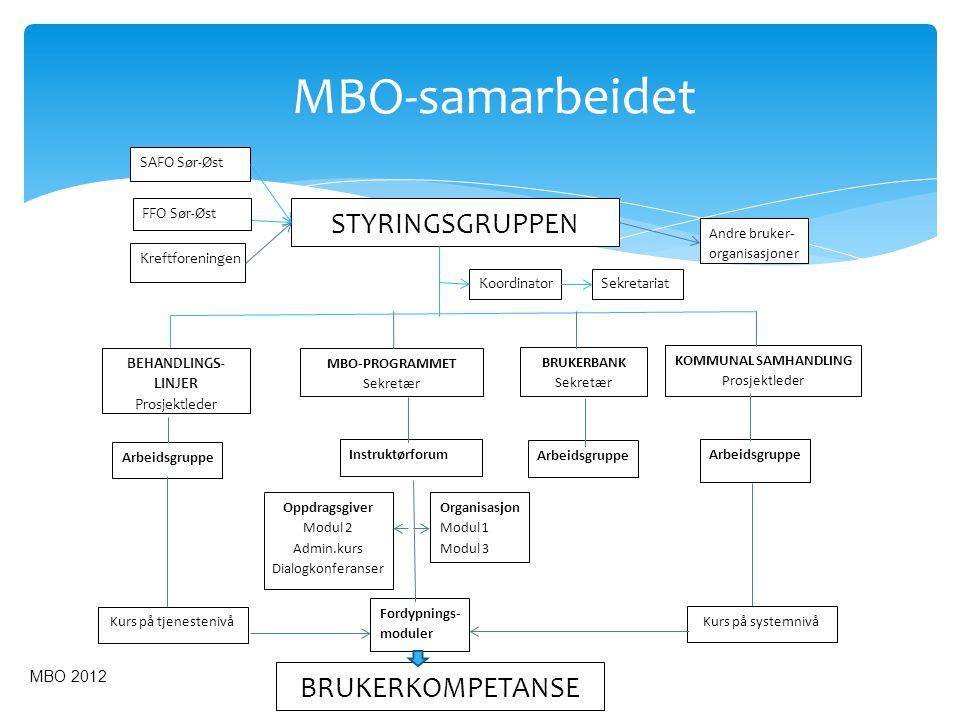 MBO-samarbeidet STYRINGSGRUPPEN BRUKERKOMPETANSE MBO 2012 SAFO Sør-Øst