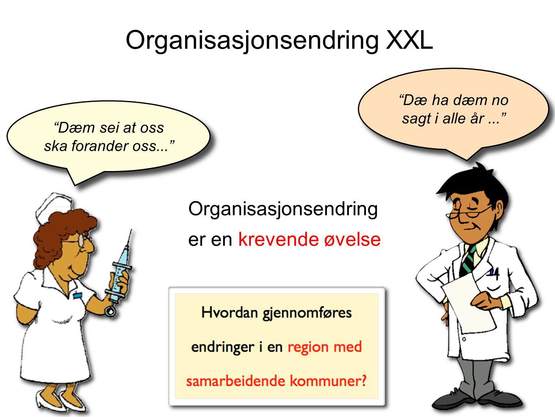 Organisasjonsendring XXL