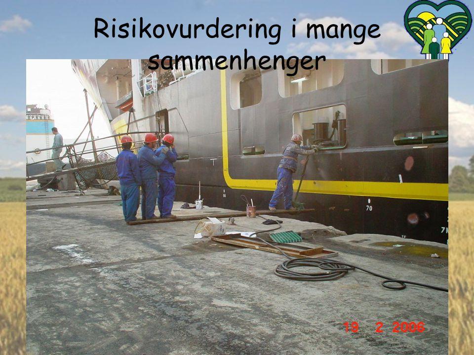 Risikovurdering i mange sammenhenger