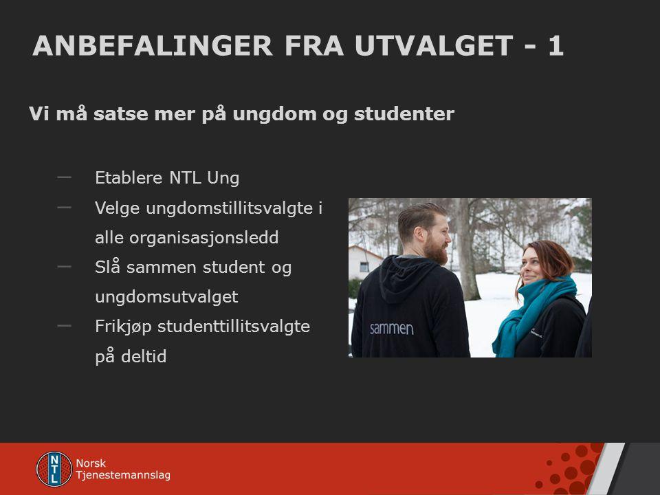 ANBEFALINGER FRA UTVALGET - 1