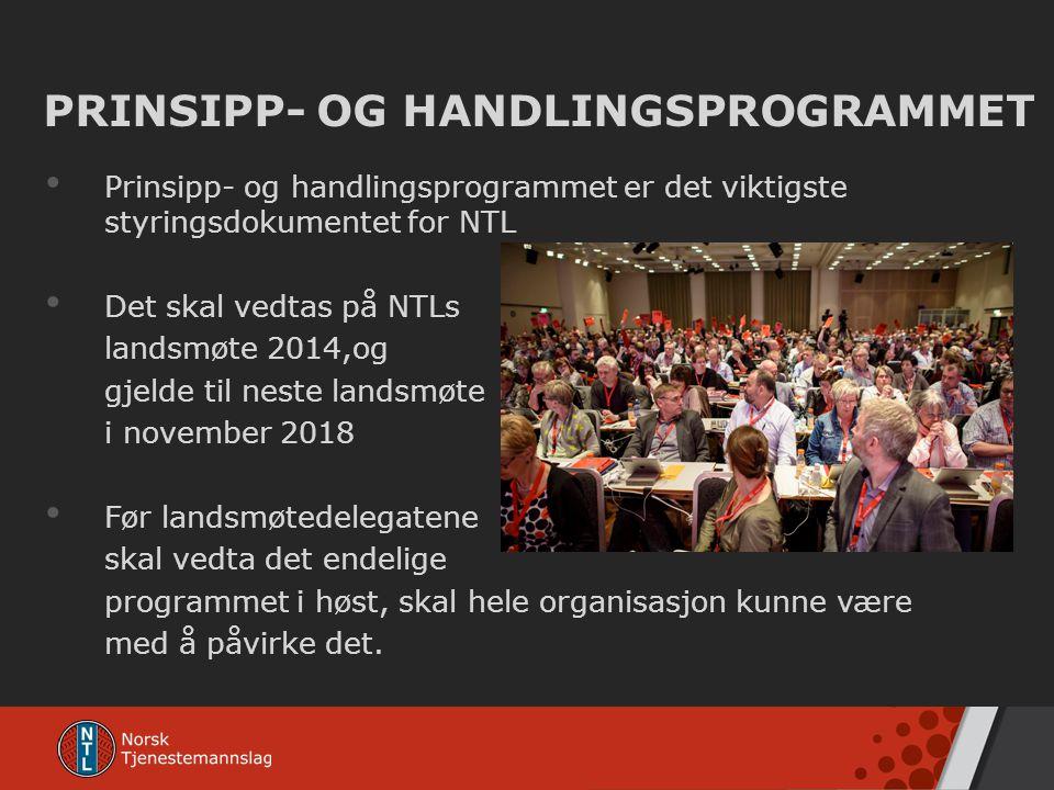PRINSIPP- OG HANDLINGSPROGRAMMET
