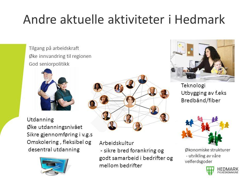 Andre aktuelle aktiviteter i Hedmark