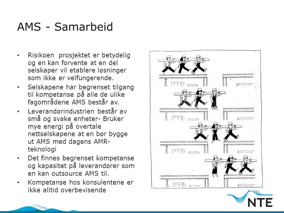 AMS - Samarbeid Risikoen prosjektet er betydelig og en kan forvente at en del selskaper vil etablere løsninger som ikke er velfungerende.