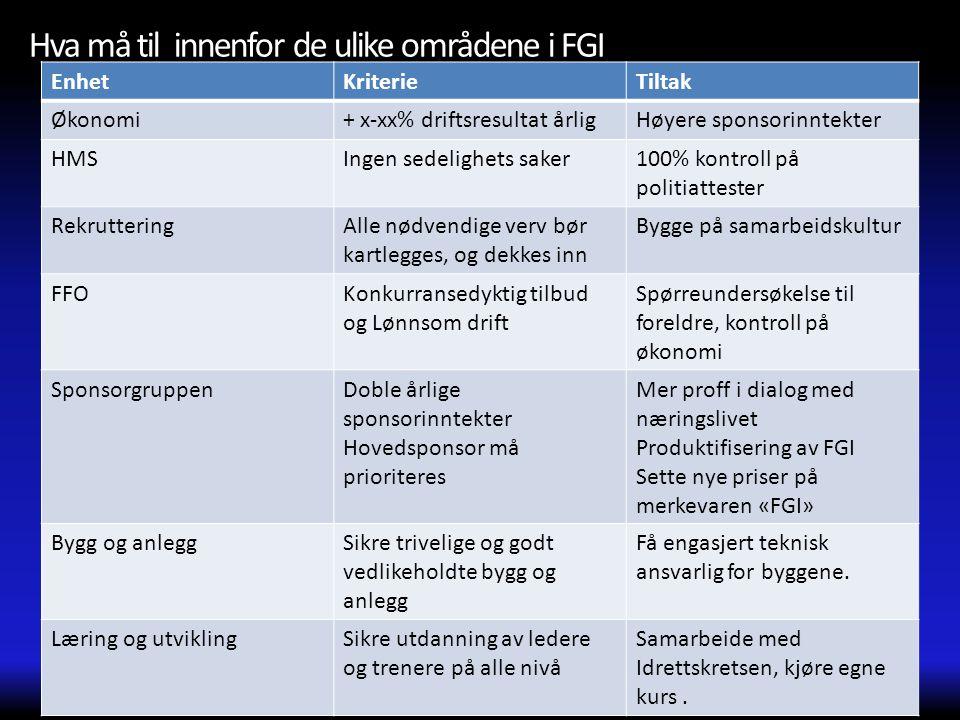 Hva må til innenfor de ulike områdene i FGI