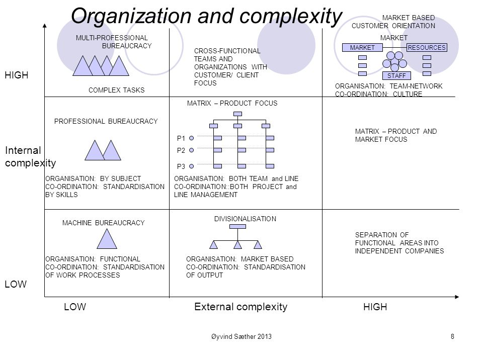 Organization and complexity