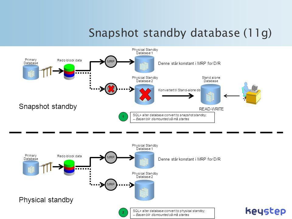 Snapshot standby database (11g)