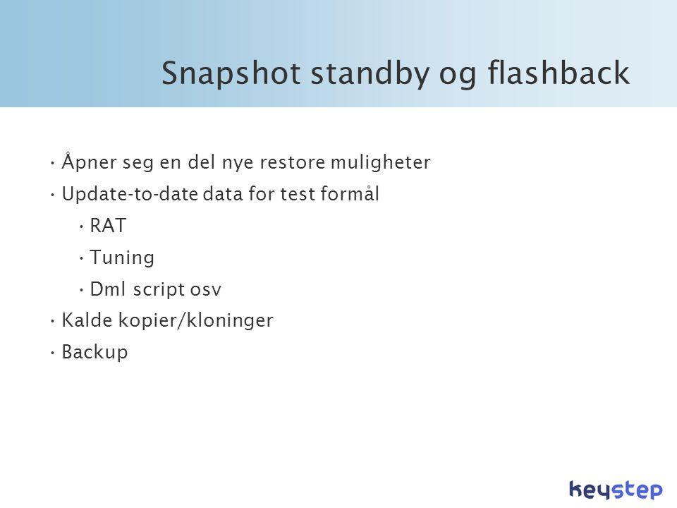 Snapshot standby og flashback