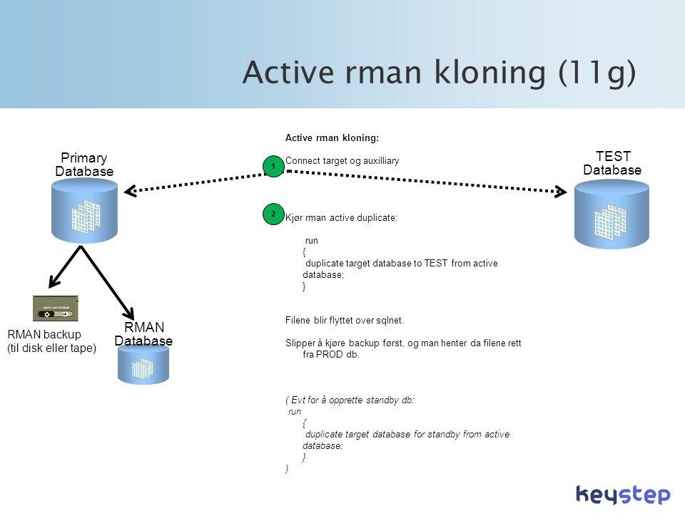 Active rman kloning (11g)