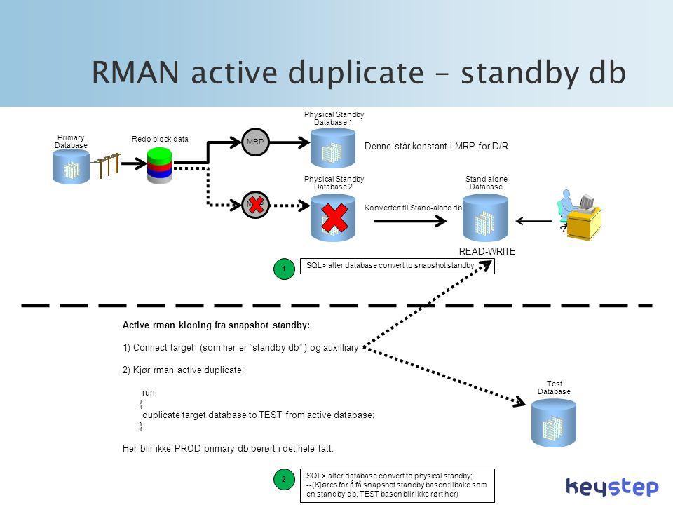 RMAN active duplicate – standby db