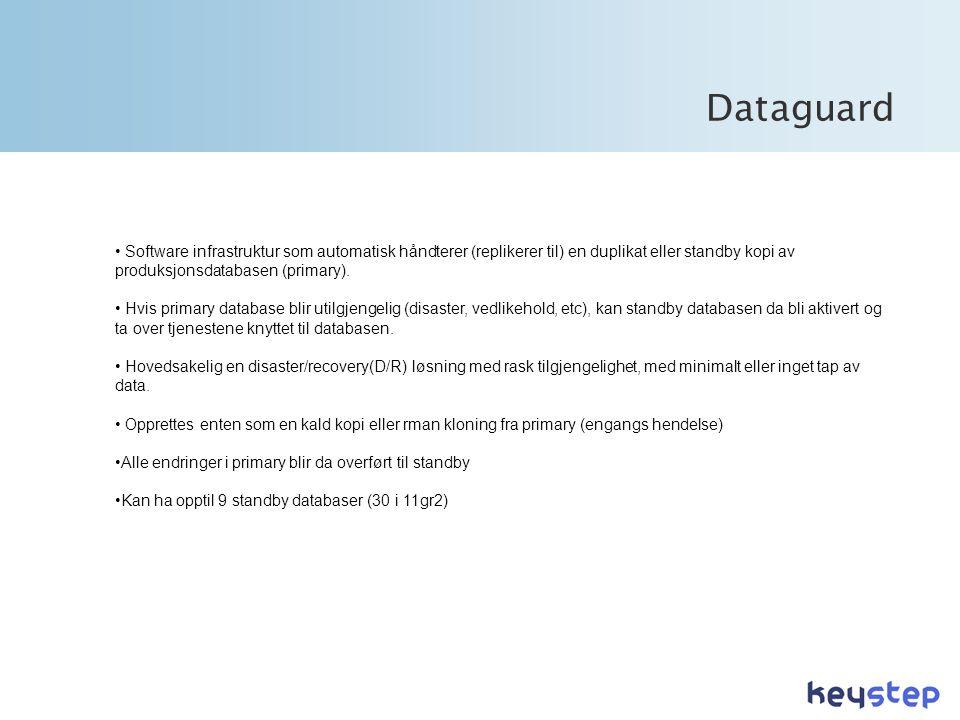 Dataguard Software infrastruktur som automatisk håndterer (replikerer til) en duplikat eller standby kopi av produksjonsdatabasen (primary).