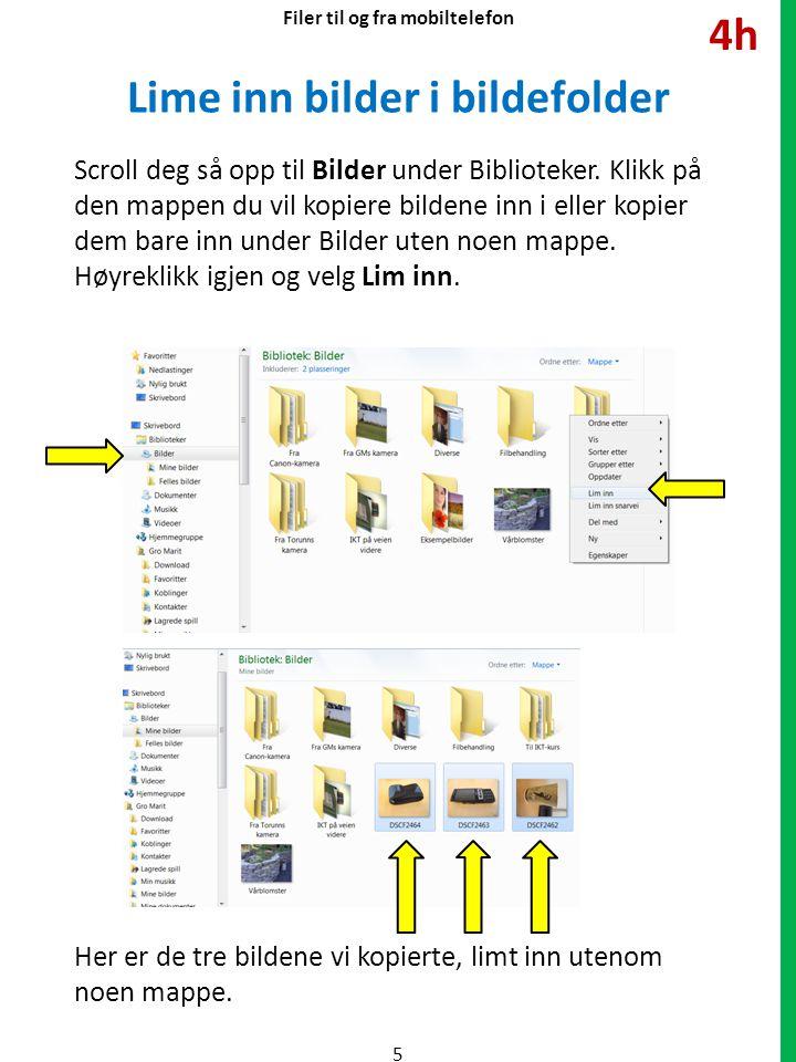 Lime inn bilder i bildefolder