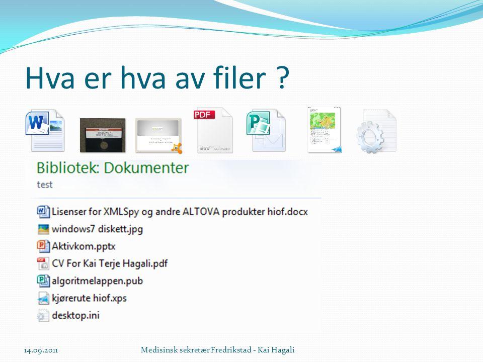 Hva er hva av filer 14.09.2011 Medisinsk sekretær Fredrikstad - Kai Hagali