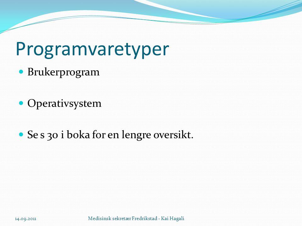 Programvaretyper Brukerprogram Operativsystem