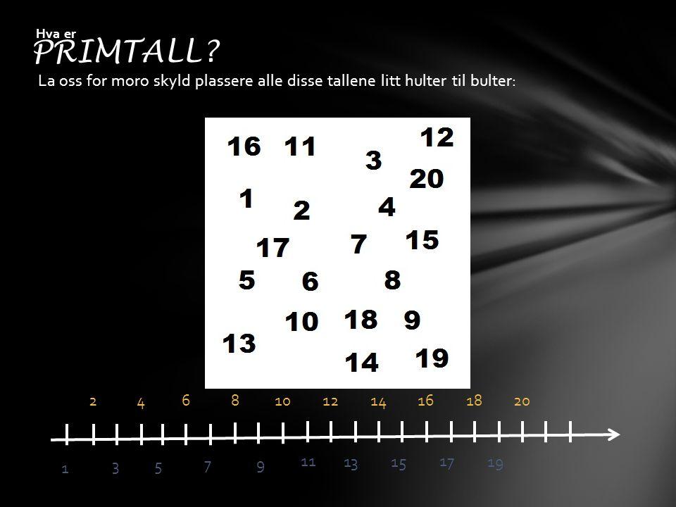 PRIMTALL Hva er. La oss for moro skyld plassere alle disse tallene litt hulter til bulter: 2. 4.