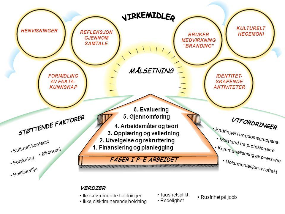 VIRKEMIDLER MÅLSETNING 6. Evaluering 5. Gjennomføring