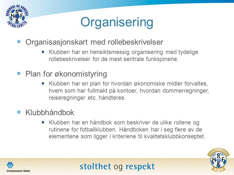 Organisering Organisasjonskart med rollebeskrivelser