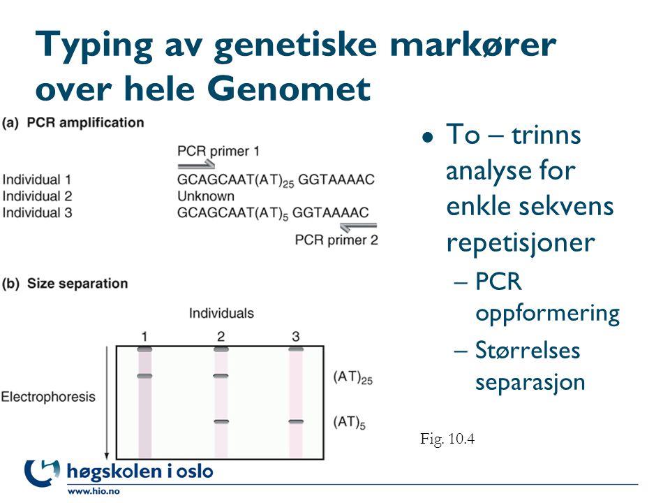 Typing av genetiske markører over hele Genomet