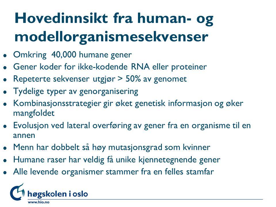Hovedinnsikt fra human- og modellorganismesekvenser