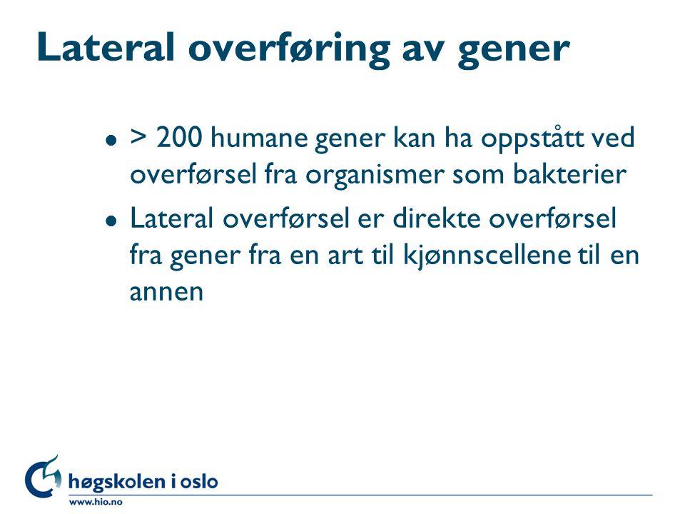 Lateral overføring av gener