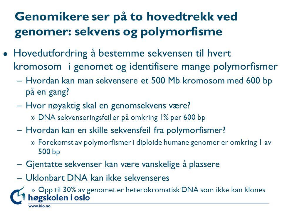 Genomikere ser på to hovedtrekk ved genomer: sekvens og polymorfisme