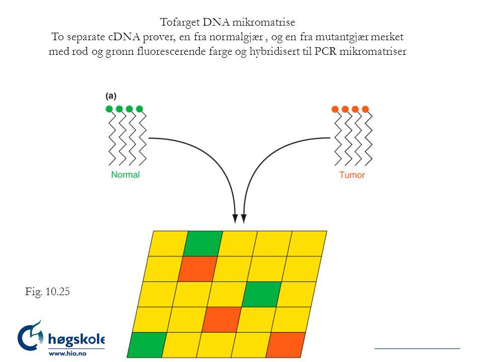 Tofarget DNA mikromatrise