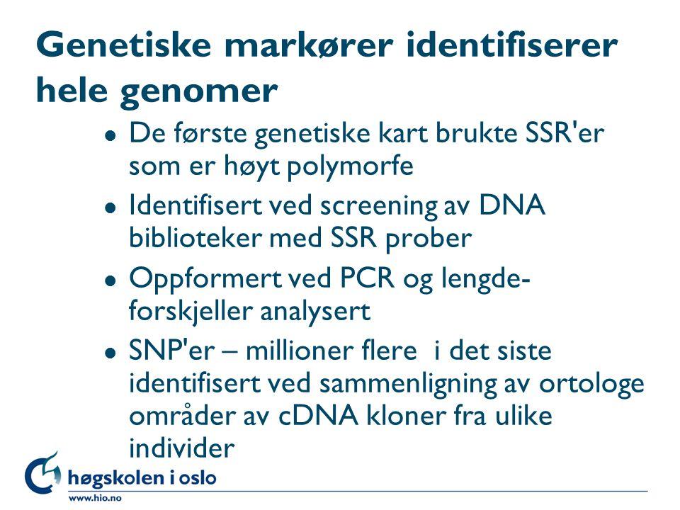 Genetiske markører identifiserer hele genomer