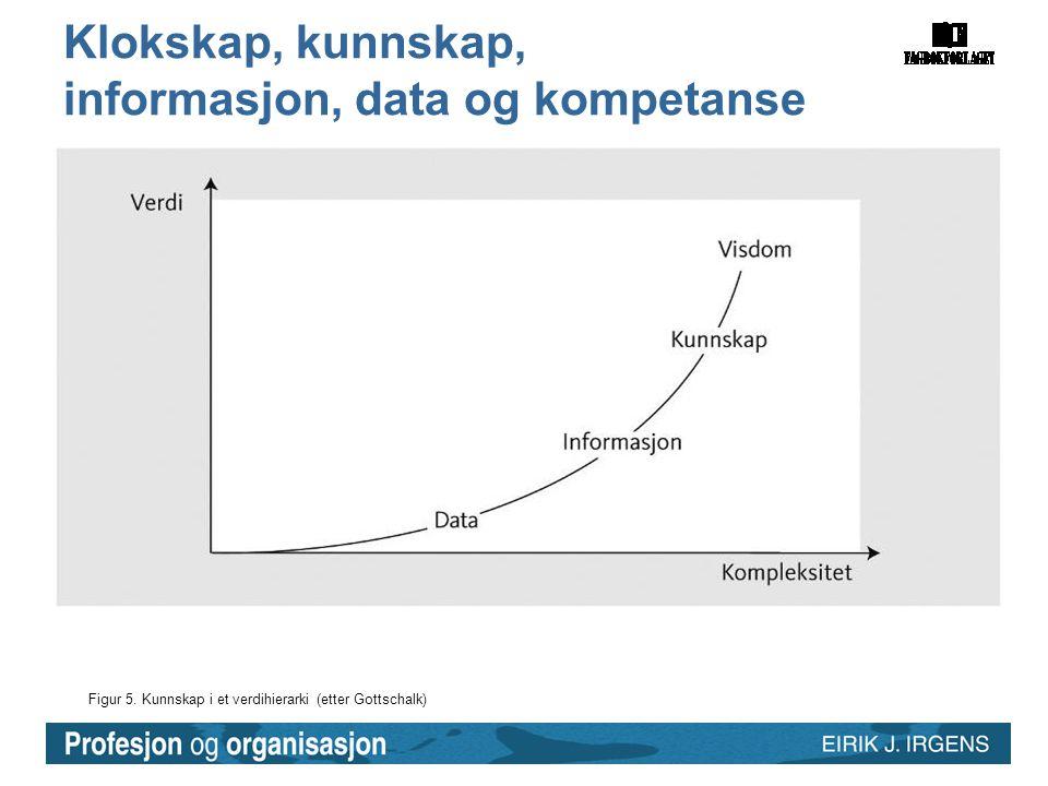 Klokskap, kunnskap, informasjon, data og kompetanse