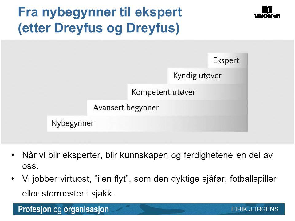 Fra nybegynner til ekspert (etter Dreyfus og Dreyfus)