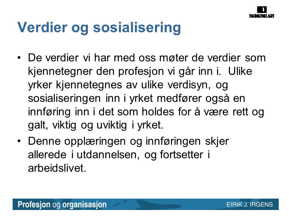 Verdier og sosialisering