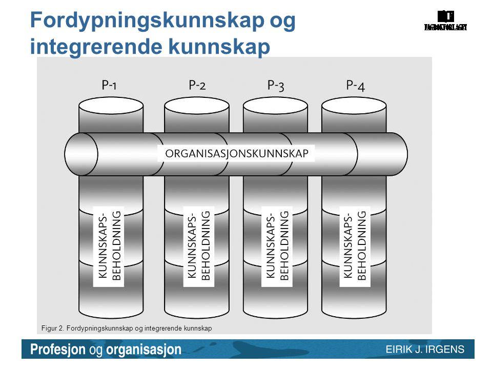 Fordypningskunnskap og integrerende kunnskap
