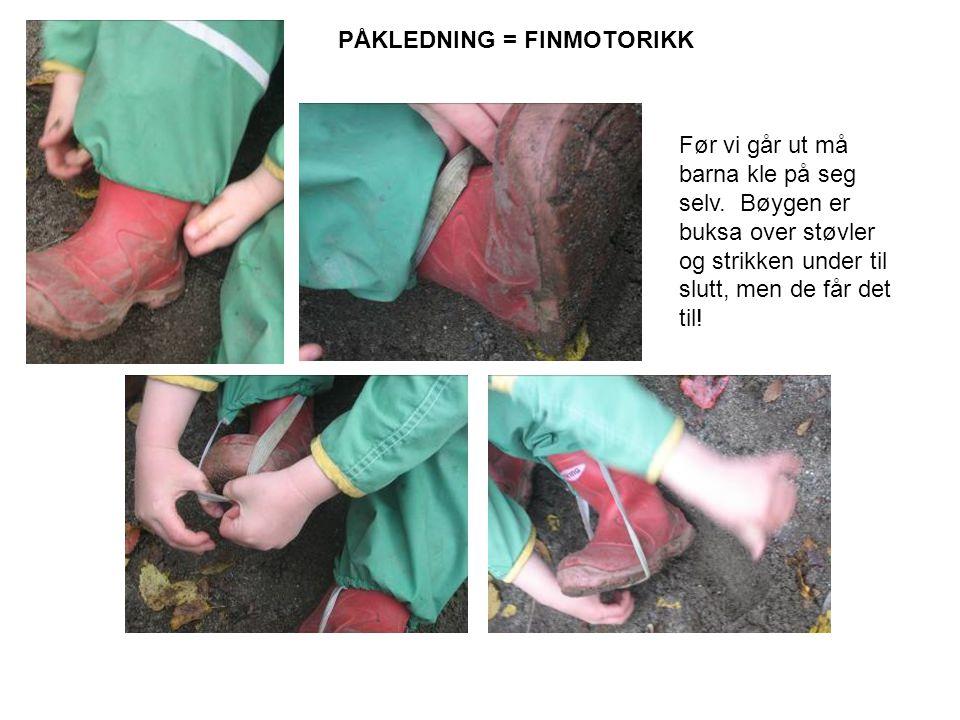 PÅKLEDNING = FINMOTORIKK