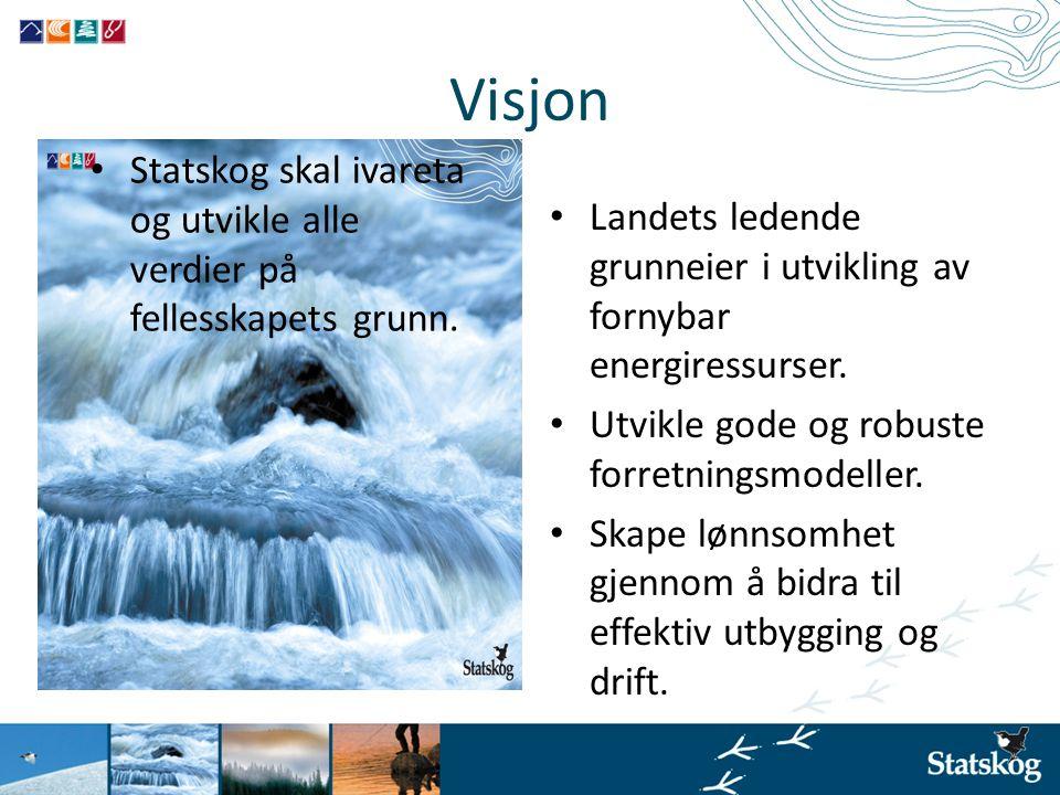 Visjon Statskog skal ivareta og utvikle alle verdier på fellesskapets grunn. Landets ledende grunneier i utvikling av fornybar energiressurser.