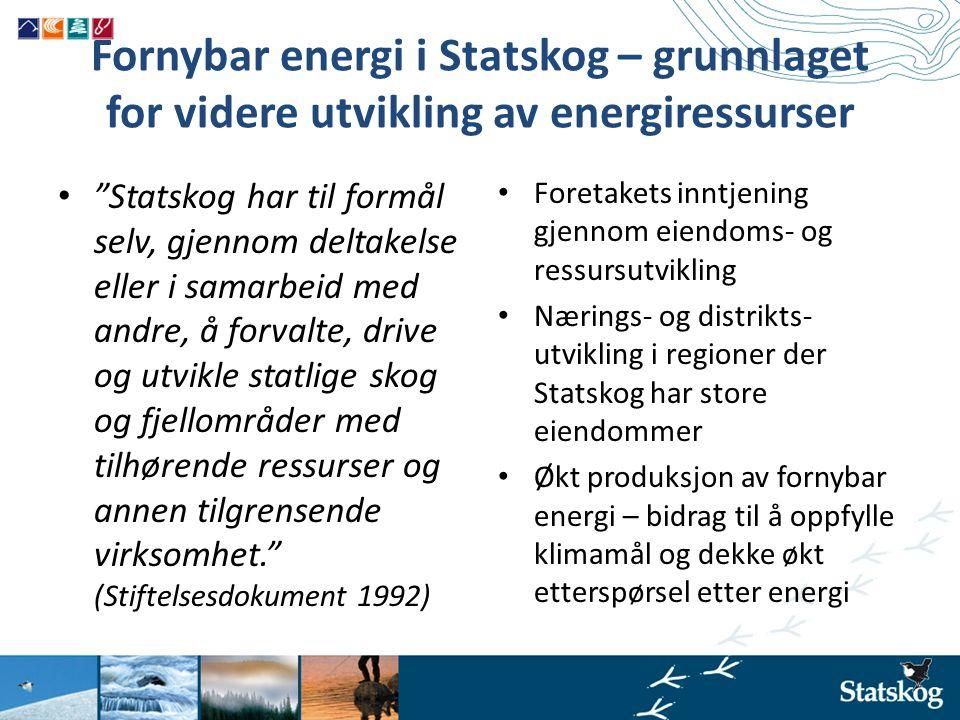 Fornybar energi i Statskog – grunnlaget for videre utvikling av energiressurser
