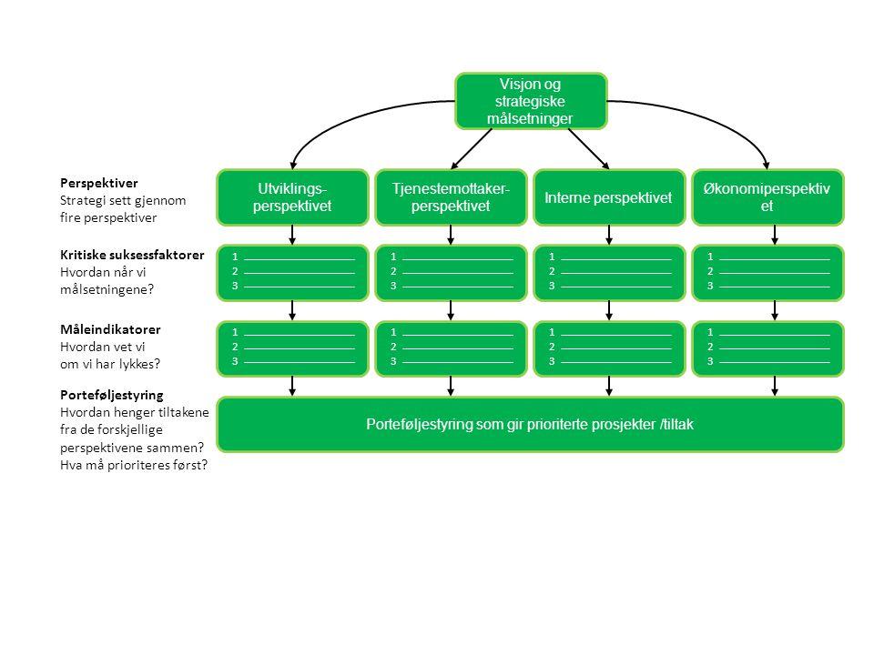 Visjon og strategiske målsetninger