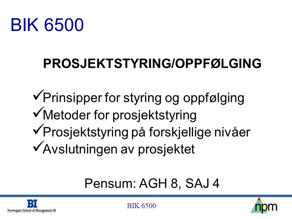 PROSJEKTSTYRING/OPPFØLGING