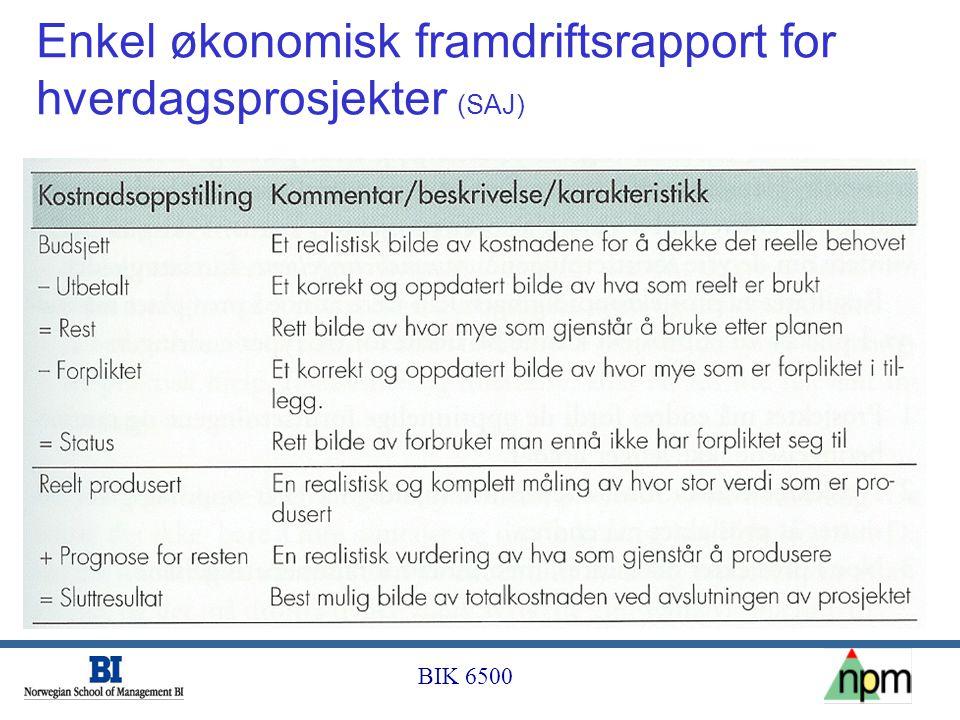 Enkel økonomisk framdriftsrapport for hverdagsprosjekter (SAJ)