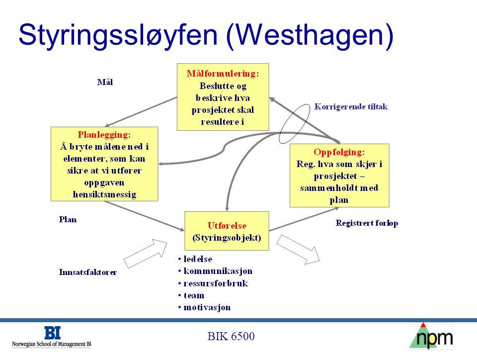 Styringssløyfen (Westhagen)