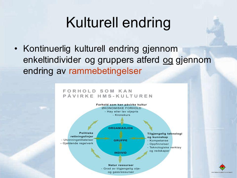 Kulturell endring Kontinuerlig kulturell endring gjennom enkeltindivider og gruppers atferd og gjennom endring av rammebetingelser.