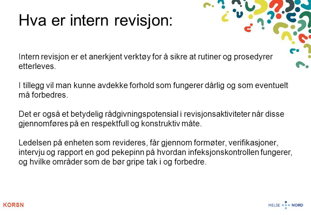 Hva er intern revisjon: