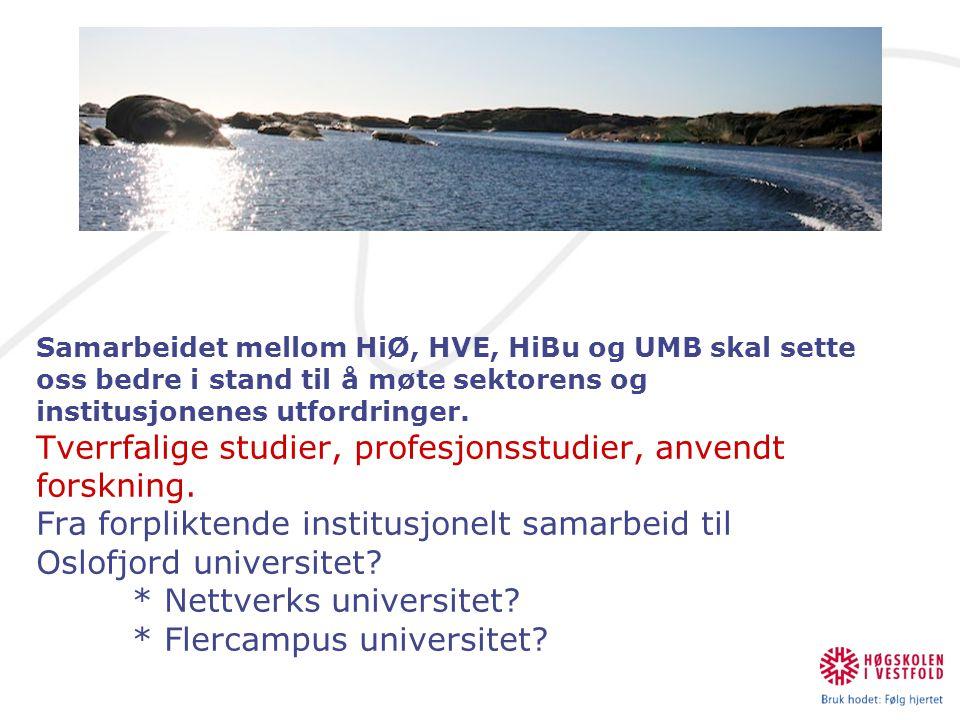 Samarbeidet mellom HiØ, HVE, HiBu og UMB skal sette oss bedre i stand til å møte sektorens og institusjonenes utfordringer. Tverrfalige studier, profesjonsstudier, anvendt forskning. Fra forpliktende institusjonelt samarbeid til Oslofjord universitet * Nettverks universitet * Flercampus universitet