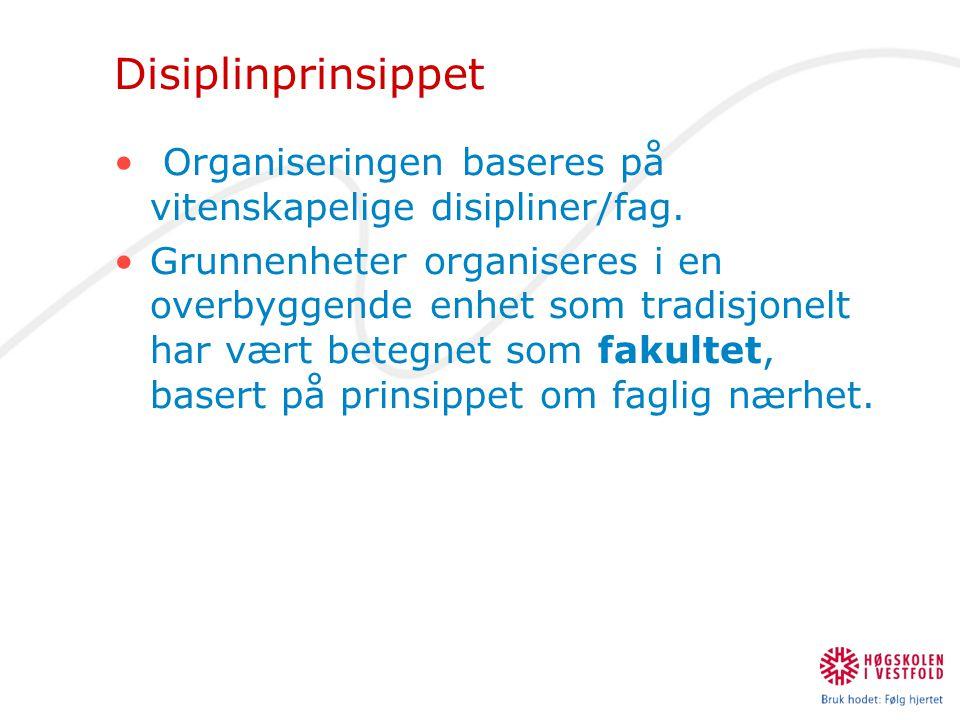 Disiplinprinsippet Organiseringen baseres på vitenskapelige disipliner/fag.