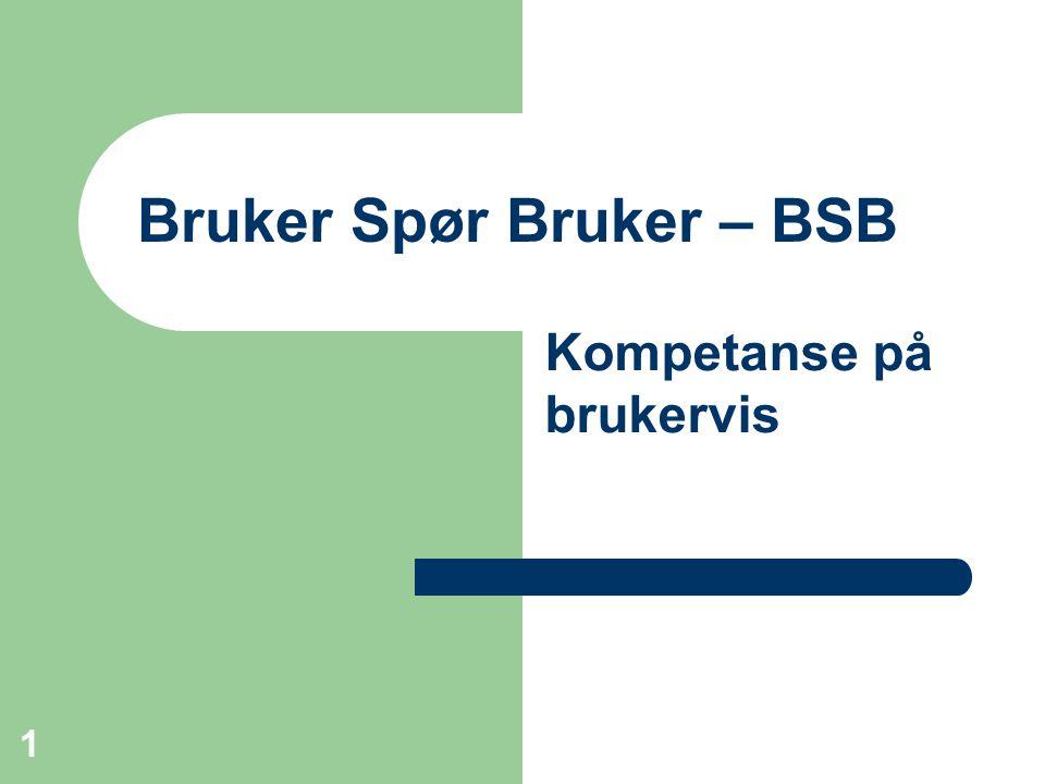 Bruker Spør Bruker – BSB