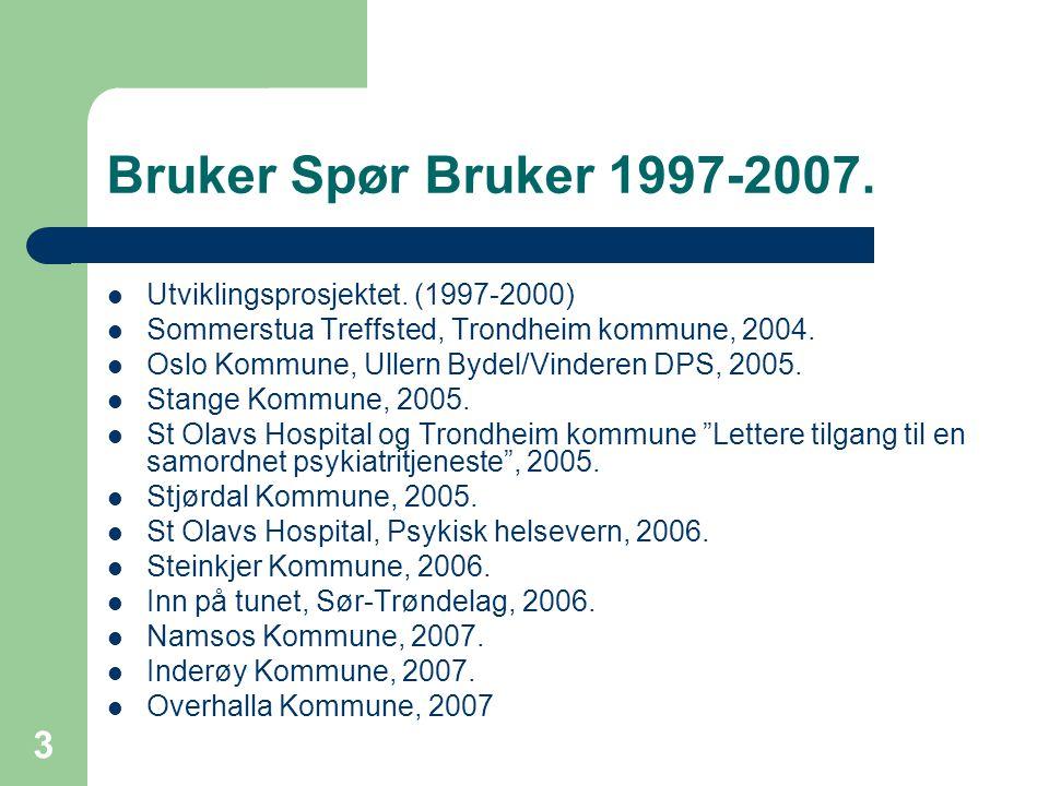 Bruker Spør Bruker 1997-2007. Utviklingsprosjektet. (1997-2000)