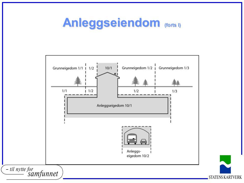 Anleggseiendom (forts I)