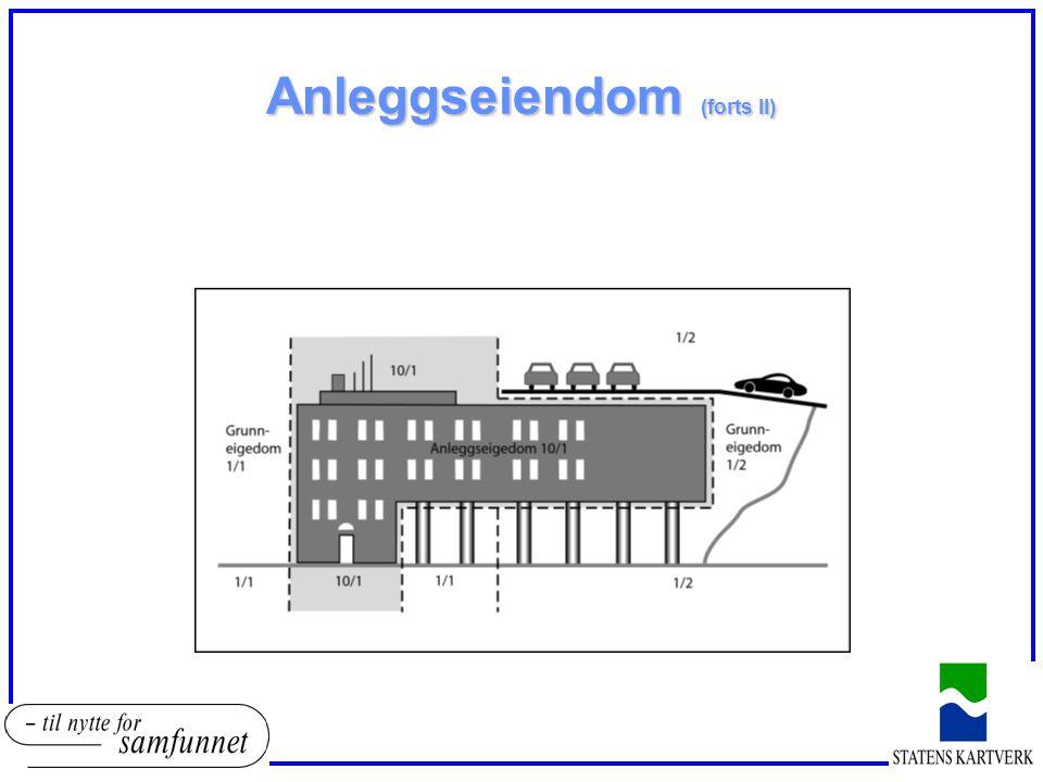 Anleggseiendom (forts II)