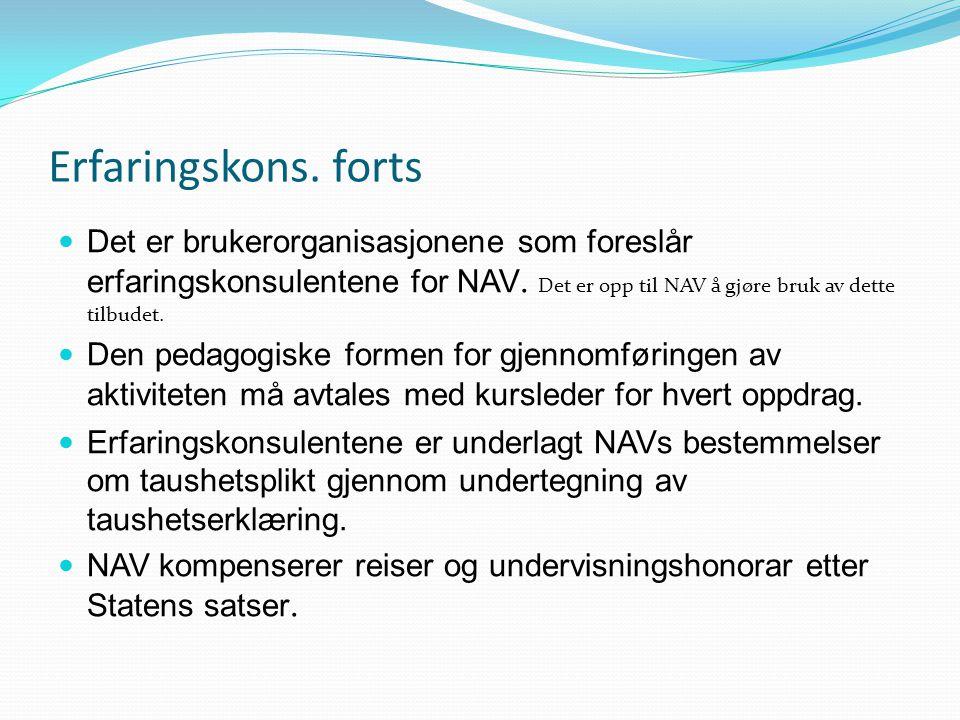 Erfaringskons. forts Det er brukerorganisasjonene som foreslår erfaringskonsulentene for NAV. Det er opp til NAV å gjøre bruk av dette tilbudet.