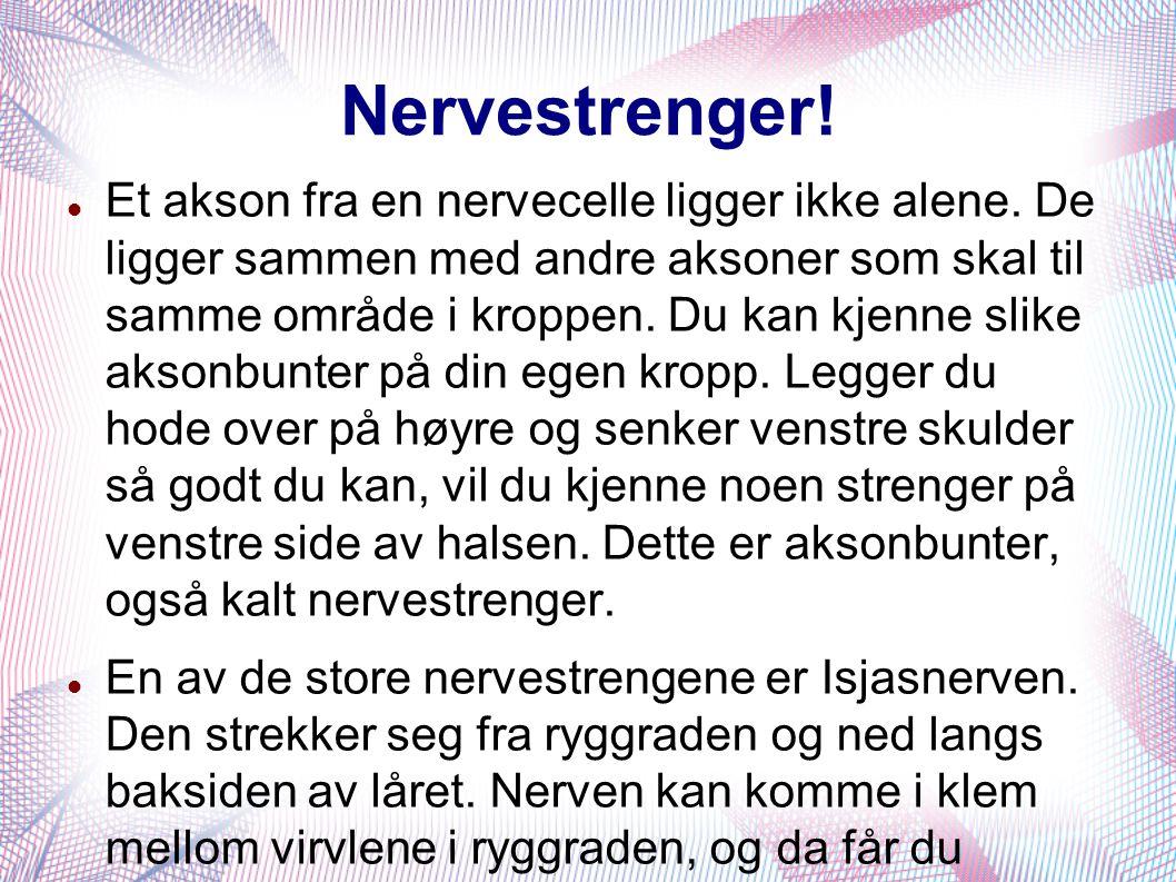 Nervestrenger!