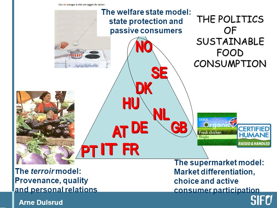 The welfare state model: state protection and passive consumers
