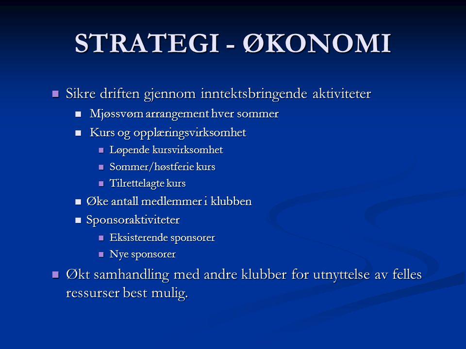 STRATEGI - ØKONOMI Sikre driften gjennom inntektsbringende aktiviteter