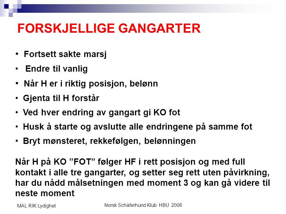 FORSKJELLIGE GANGARTER